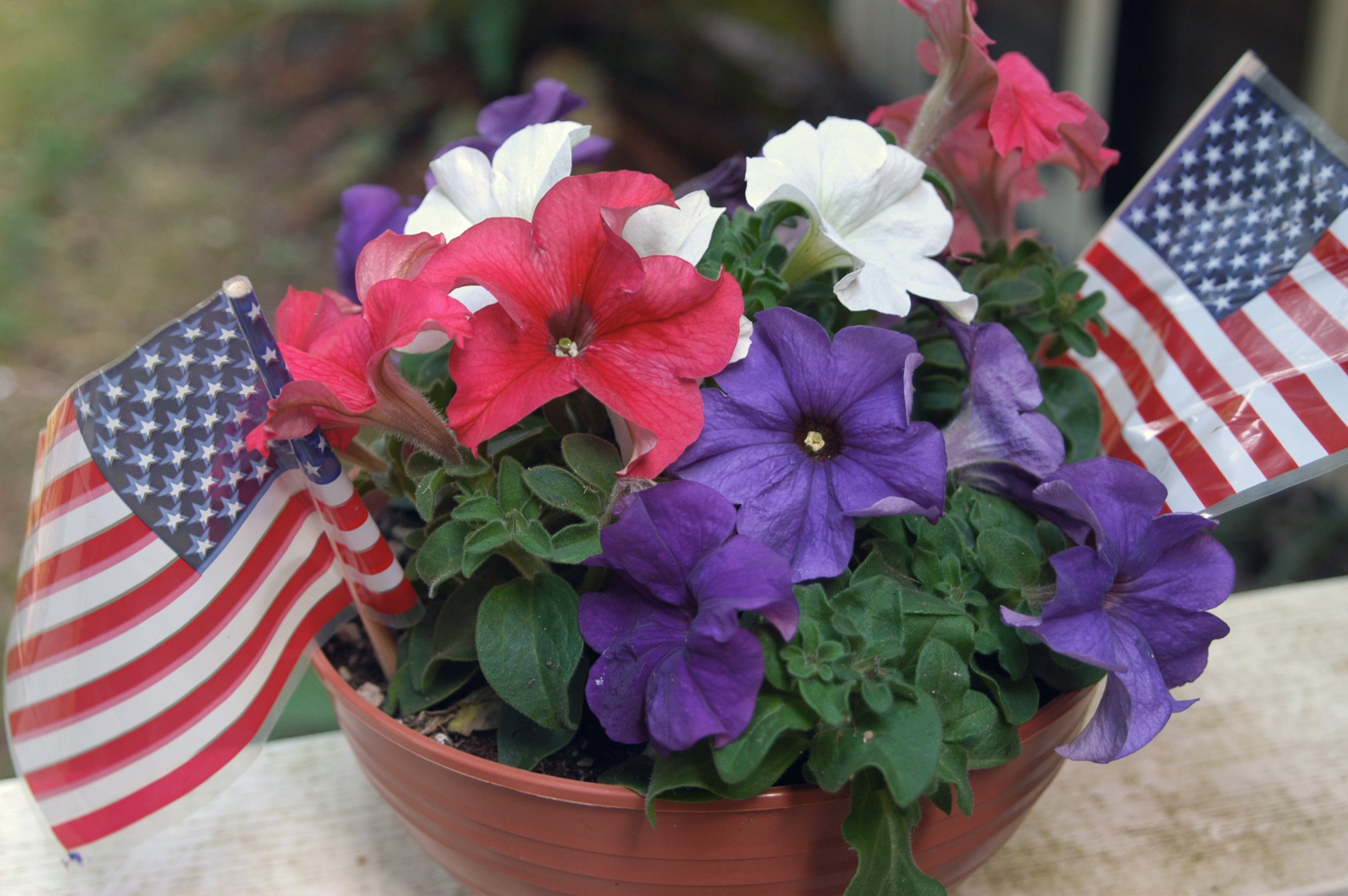 xxflowersjuly-4th-005.jpg