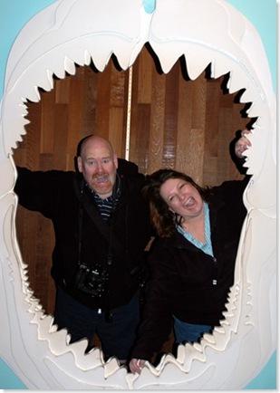 azoo sharkattack