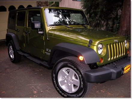 mamas jeep 003